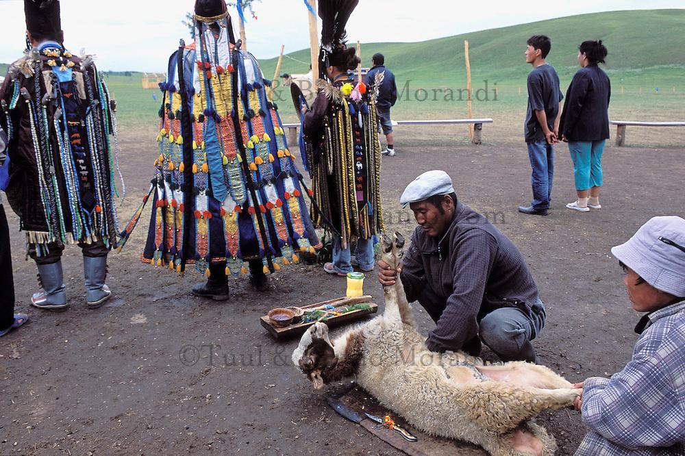 Mongolie. Centre d'initiation chamanique. Shaman. Chamane.  Sacrifice d'un mouton. // Sheep sacrifice.  Shamanisme initiation centre. Mongolia