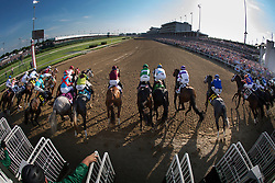 Nyquist with Mario Gutierrez up, breaks from the gate with the twenty horse field and wins the 142nd running of the Kentucky Derby, Saturday, May 07, 2016 at Churchill Downs in Louisville.
