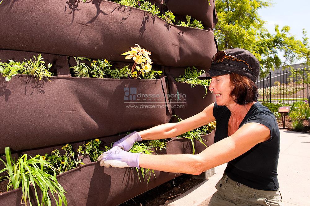 Sensory Garden, Volunteer Christa Hammel
