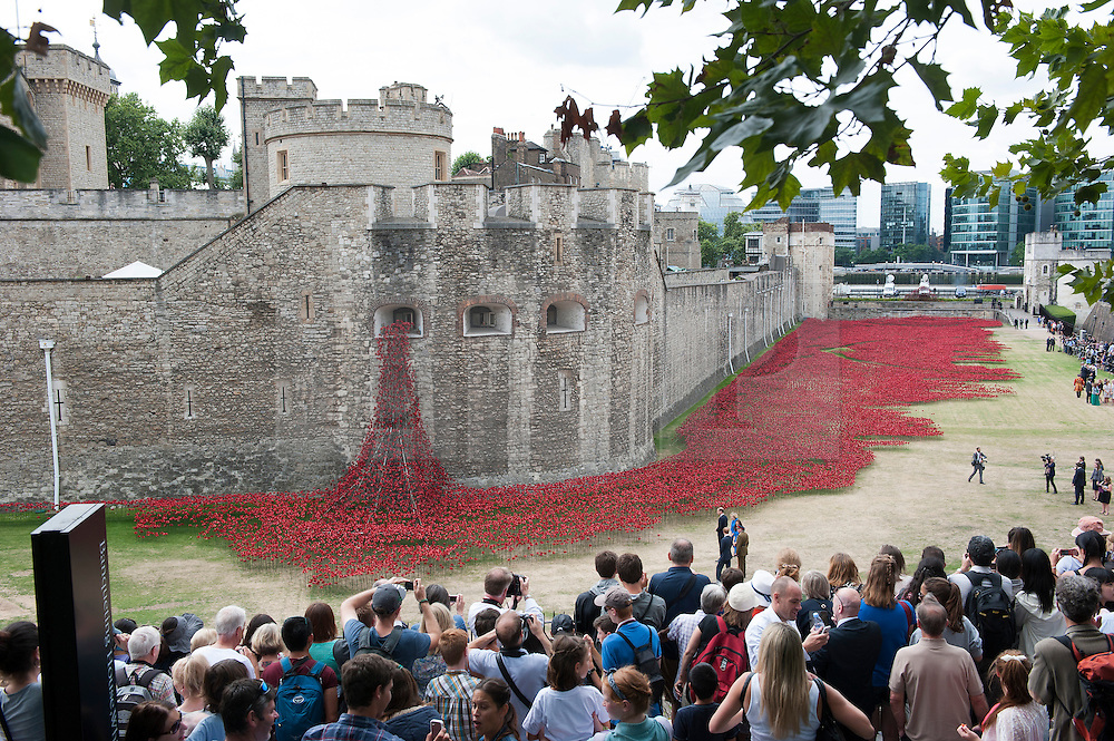 © London News Pictures. 05/08/2014. London, UK. Members of the public gather to watch The Duke and Duchess of Cambridge and Prince Harry (pictured bottom right next to poppies) visit the Tower of London's 'Blood Swept Lands and Seas of Red' poppy installation in the Tower of London's moat.  A total of 888,246 poppies are planted, with each flower representing a British military fatality from WWI.  Photo credit : Ben Cawthra/LNP