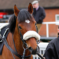 Vale of Lingfield