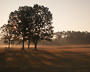 Early morning as the fog is burning off in Manassas National Battlefield Park