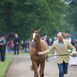 Bill Levett and Sea Oro at Bramham Horse Trials 2010 CCI***