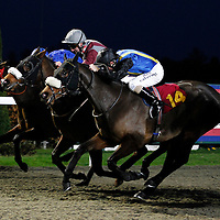 Rapid Water and Jimmy Fortune winning the 4.20 race
