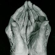 Hands of Leo Lionni