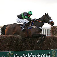 Mallusk and Charles Greene jumping the last in the 2.20 race