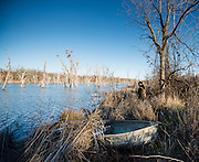 Tony Osborne walks along bank of lake to scare up ducks that are landing downwind from duck blind.