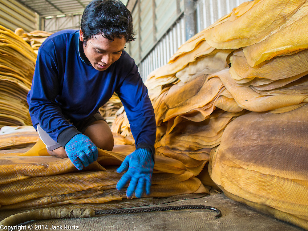 "15 DECEMBER 2014 - CHUM SAENG, RAYONG, THAILAND: A worker stacks rubber sheets at a business that buys rubber from farmers in Chum Saeng, Thailand. Thailand is the second leading rubber exporter in the world. In the last two years, the price paid to rubber farmers has plunged from approximately 190 Baht per kilo (about $6.10 US) to 45 Baht per kilo (about $1.20 US). It costs about 65 Baht per kilo to produce rubber ($2.05 US). Prices have plunged 5 percent since September, when rubber was about 52Baht per kilo. Some rubber farmers have taken jobs in the construction trade or in Bangkok to provide for their families during the slump. The Thai government recently announced a ""Rubber Fund"" to assist small farm owners but said prices won't rebound until production is cut and world demand for rubber picks up.     PHOTO BY JACK KURTZ"