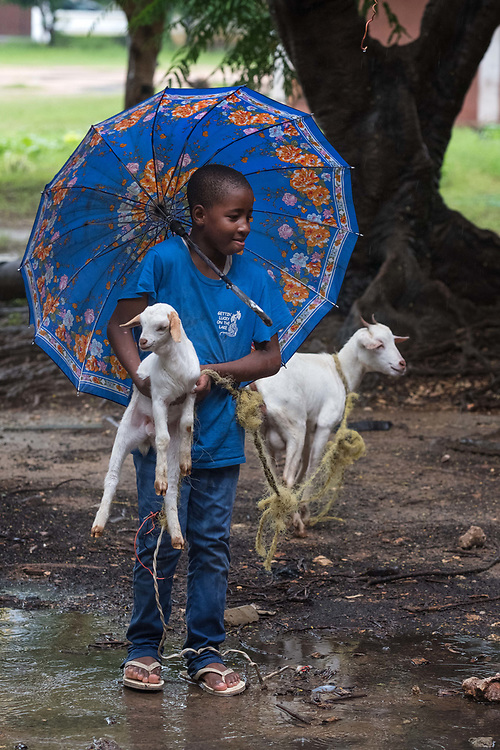 Dar es Salaam, Tanzania  - 5/11/17 - A boy named Dicki, 10, carries a goat kid across across a puddle in Dar es Salaam, Tanzania on May 11, 2017. Constant rains over the past few weeks have wreaked havoc on infrastructure in the economic capital of Tanzania.Photo: Daniel Hayduk