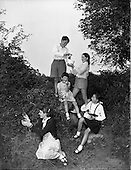1959 - 19/09 Blackberry Picking at Sandyford