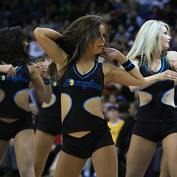 04 February 2009: The Hornets Honeybee cheerleaders perform during a 93-107 loss by the New Orleans Hornets to the Chicago Bulls at the New Orleans Arena in New Orleans, LA.