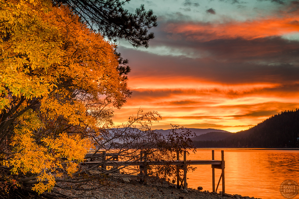 """""""Donner Lake Sunrise 17"""" - Sunrise photograph of a vibrant orange sunrise, a dock, and a bush with Fall colors at Donner Lake in Truckee, California."""