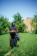 Portrait of Sofia, a rose farmer from Kelaat M'Gouna, Dades Valley - known as the 'valley of roses' - Southern Morocco, 2016-05-14.<br /> <br /> When the roses begin to bloom and the picking season begins, people from all around the region secure work harvesting the flowers in the fields. Pickers who do not own their own land and need work during the harvesting season can expect to be paid 13-15dh for each kilo of roses and it is possible to earn 100dh in a day, if few breaks are taken. <br /> <br /> The picking season lasts for around 3 weeks and while the roses are in full bloom the entire valley of Kelaat Mgouna quite literally 'smells of roses.' Stepping down into the rose valley, only a short walk from the main roadside, feels like a different world to the nearby festival celebrations in the town centre. No noise or pollution from traffic, only birdsong and a gentle calmness in the air as the day breaks and the locals peacefully go about their work.