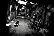 Hong Kong | HongKong | 02.12.2012 :  <br /> <br /> hier: Ein Hund in einer Nebenstrasse<br />   <br /> Sascha Rheker<br /> 20121202<br /> <br /> <br /> <br /> [Inhaltsveraendernde Manipulation des Fotos nur nach ausdruecklicher Genehmigung des Fotografen. Vereinbarungen ueber Abtretung von Persoenlichkeitsrechten/Model Release der abgebildeten Person/Personen liegt/liegen nicht vor.] [No Model Release | No Property Release]