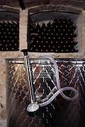 COVIBIO, COLLECTIVE wine producers , Italy, Abruzzo