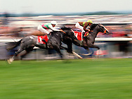 2 horses Racing at The Derby, Epsom, UK