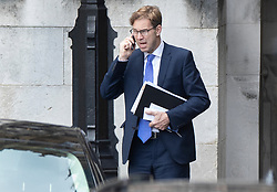 © Licensed to London News Pictures. 03/04/2019. London, UK. Conservative MP Tobias Ellwood is seen on the phone at Parliament.  Labour Party Leader Jeremy Corbyn is holding talks with Prime Minister Theresa May to seek a way forward with the Brexit deadlock. Photo credit: Peter Macdiarmid/LNP