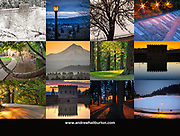 Mount Tabor Park 2020 Calendar Back Cover, Portland, Oregon