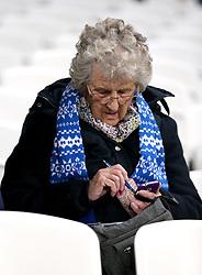 A Brighton & Hove Albion fan in the stands