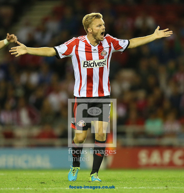 Picture by Paul Gaythorpe/Focus Images Ltd +447771 871632<br /> 27/08/2013<br /> Seb Larsson of Sunderland during the Capital One Cup match against Milton Keynes Dons at the Stadium Of Light, Sunderland.