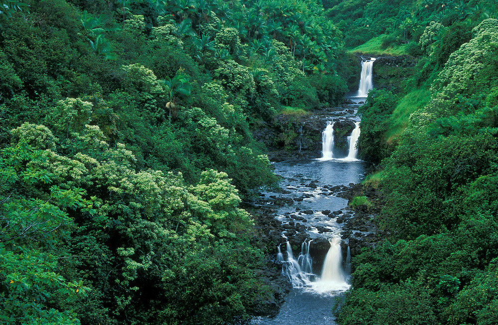 Waterfalls on Umauma Stream, viewed from World Gardens lookout, Hamakua Coast, Island of Hawaii.