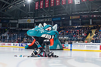 KELOWNA, CANADA - FEBRUARY 23: Rocky Raccoon, the mascot of the Kelowna Rockets slides across center ice at the start of the game against the Kamloops Blazers  on February 23, 2019 at Prospera Place in Kelowna, British Columbia, Canada.  (Photo by Marissa Baecker/Shoot the Breeze)