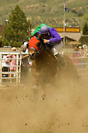 Quarter Horse Racing, Miles City, Montana, blurred motion