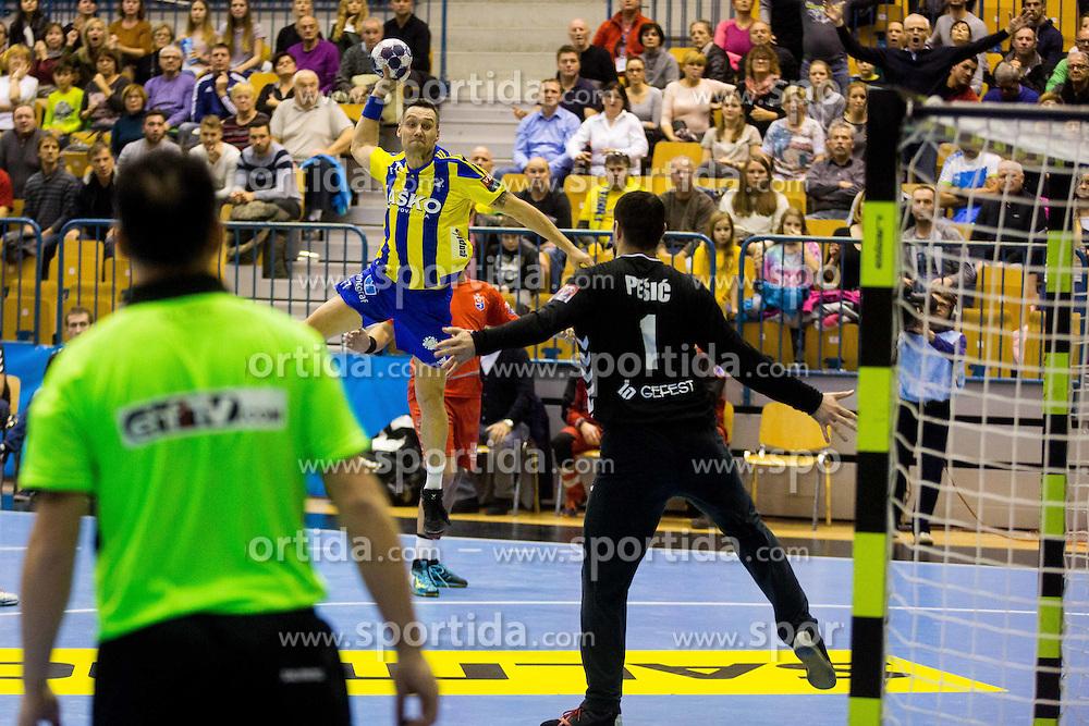 Luka Zvizej of RK Celje Pivovarna Lasko during handball match between RK Celje Pivovarna Lasko (SLO) and HC Meshkov Brest (BLR) in Group phase of EHF Men's Champions League 2016/17, on November 27, 2016 in Arena Zlatorog, Celje, Slovenia. Photo by Ziga Zupan / Sportida