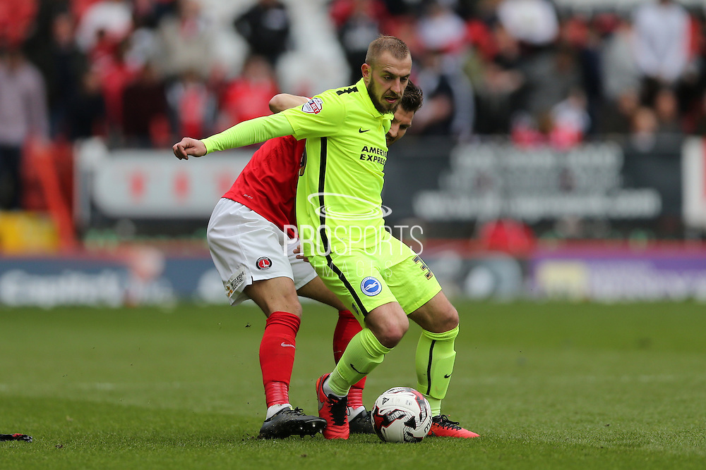 Brighton striker Jiri Skalak (38) during the Sky Bet Championship match between Charlton Athletic and Brighton and Hove Albion at The Valley, London, England on 23 April 2016.