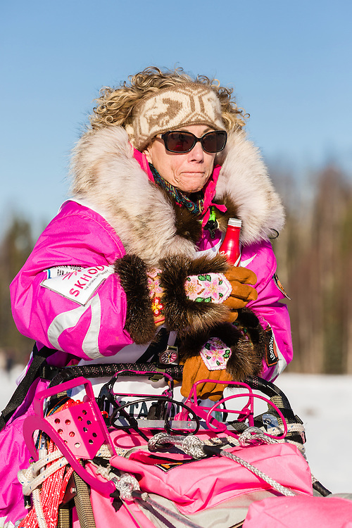 Musher DeeDee Jonrowe competing in the 44th Iditarod Trail Sled Dog Race on Long Lake after leaving the restart on Willow Lake in Southcentral Alaska.  Afternoon. Winter.