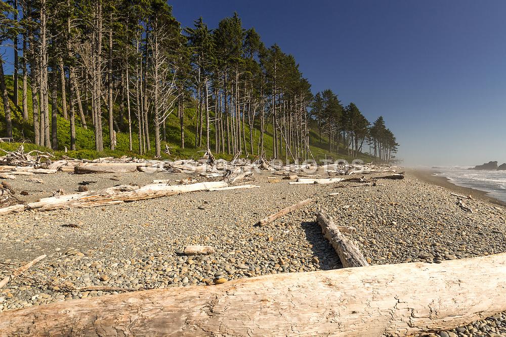 On the Coast of the Olympic Peninsula in Washington State