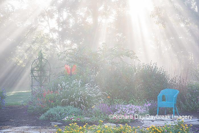 63821-23704 Sun rays in fog in flower garden, Marion Co., IL