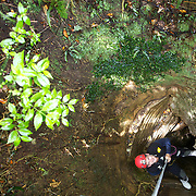 Abseiling into the Ruakuri Cave while Black Water rafting in the Waitomo Glowworm Caves, Waitomo, North Island, New Zealand..The Legendary Black Water Rafting Company is New Zealand's first black water adventure tour operator which takes tourists through the  Ruakuri Cave at Waitomo..The five hour expedition combines abseiling the 35 metre entrance. climbing, a flying fox. black water tubing, leaping and floating through Ruakuri Cave and observing glow worms. The journey concludes  into the sunlight of the Waitomo forest..Waitomo, New Zealand,, 14th December  2010 Photo Tim Clayton