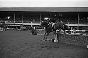 08/05/1964<br /> 05/08/1964<br /> 08 May 1964<br /> R.D.S. Spring Show, Ballsbridge Dublin, Championship Showjumping,