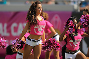 Jacksonville Jaguars cheerleaders wear pink in honor of Breast Cancer Awareness during an NFL game against the San Diego Chargers at EverBank Field on Oct. 20, 2013 in Jacksonville, Florida. San Diego won 24-6.<br /> <br /> &copy;2013 Scott A. Miller