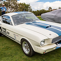 1966 Shelby Mustang GT350 in the Shelby Paddock at the 2012 Santa Fe Concorso.