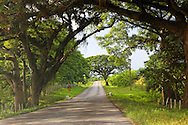 Country road in Guaos, Cienfuegos Province, Cuba.