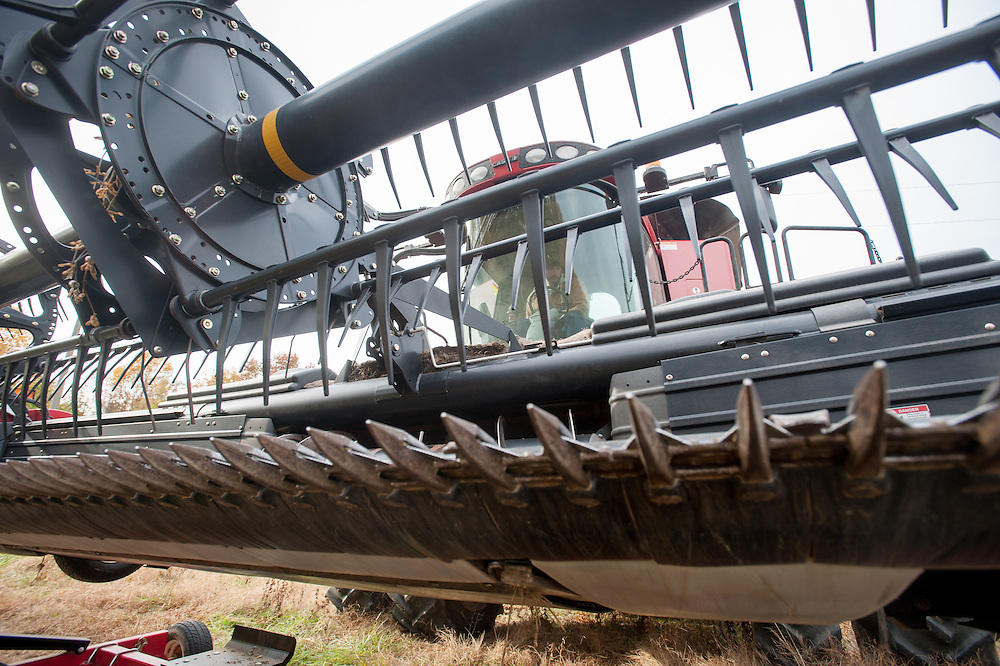 Close-up of farm equipment in soybean field<br /> Ridgely, Maryland