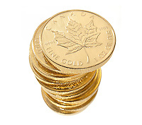 stack of gold canadian coins photographed on a white background