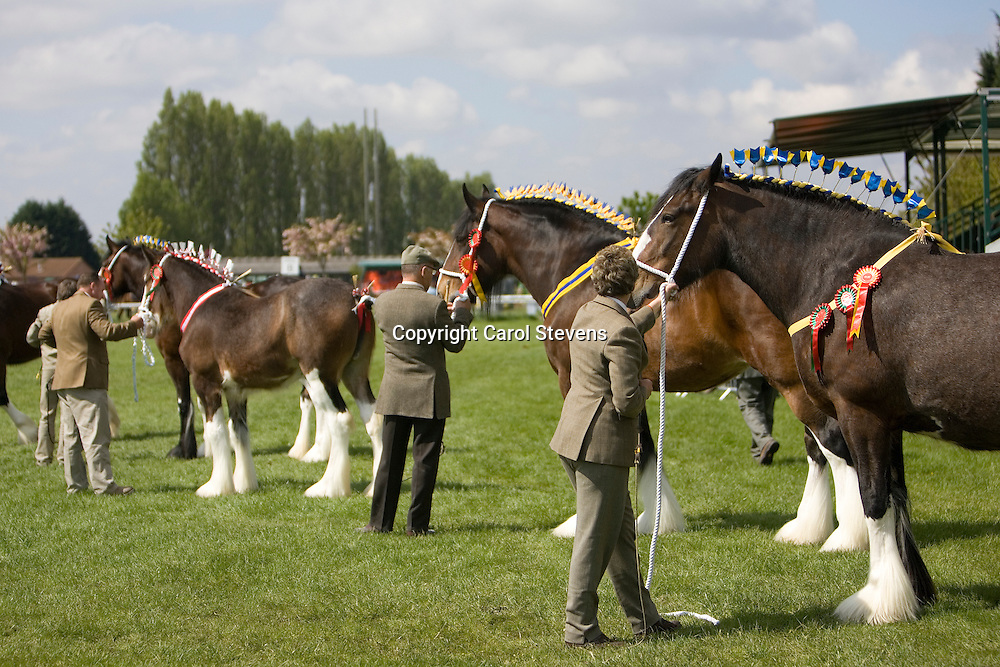 Newark and Notts Show 2010