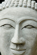 Buddha head in cement,