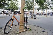 In the area the west entrance Triulzia of Expo 2015, bicycles and push scooters of visitors are tied to trees, Rho-Pero, Milan, in June 2015. &copy; Carlo Cerchioli<br /> <br /> Sul piazzale dell'ingresso ovest Triulzia di Expo 2015, le biciclette e i monopattini dei visitatori vengano legate agli alberi, Rho-Pero, Milano, giugno 2015.