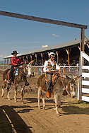 Cowgirls at Montana Mule Days in donkey (Equus asinus) class, MODEL RELEASED