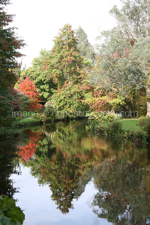 Autumn trees reflected in a river in Wicklow, Ireland