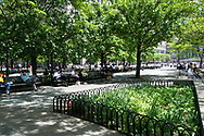 Terraces along the esplanade at the North Cove in Battery Park City.