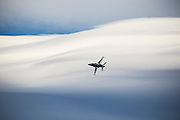 RAAF Hawk127 banking in front of a massive lenticular cloud at Warbirds over Wanaka 2016, New Zealand