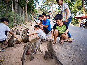 """12 FEBRUARY 2019 - SIHANOUKVILLE, CAMBODIA:  Chinese tourists feed macaque monkeys near Independence Beach in Sihanoukville. There are about 50 Chinese casinos and resort hotels either open or under construction in Sihanoukville. The casinos are changing the city, once a sleepy port on Southeast Asia's """"backpacker trail"""" into a booming city. The change is coming with a cost though. Many Cambodian residents of Sihanoukville  have lost their homes to make way for the casinos and the jobs are going to Chinese workers, brought in to build casinos and work in the casinos.       PHOTO BY JACK KURTZ"""