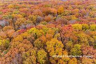 63876-02510 Aerial view of fall color trees Stephen A. Forbes State Park Marion Co. IL