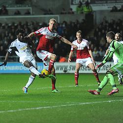 Swansea City v Fulham