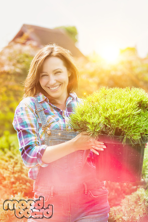 Portrait of mature beautiful gardener carrying plant on pot